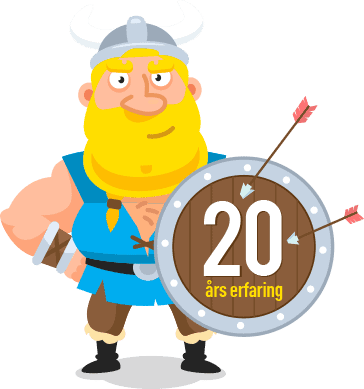 about-viking