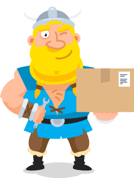 delivery-viking image