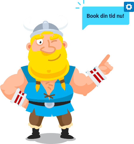 Booking Viking